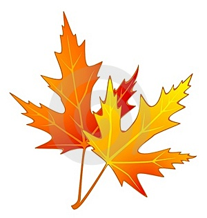 Autumnal Leave. Stock Image - Image: 16740821