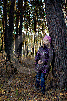 The Girl In An Autumn Wood Royalty Free Stock Images - Image: 16784729
