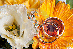 Rings On Flower Royalty Free Stock Photography - Image: 16799507