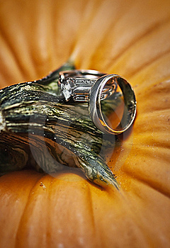 Wedding Rings On Pumpkin Royalty Free Stock Photo - Image: 16799875