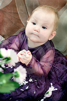 Little Girl And Flowers Stock Images - Image: 1688274