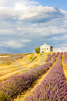 Provence, France Stock Photo - Image: 16806440