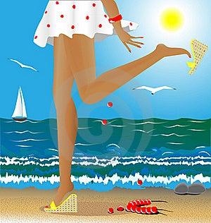 Seasons: Summer Royalty Free Stock Image - Image: 16810956