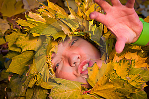 Woman Covered By Autumnal Leaves Royalty Free Stock Photography - Image: 16817247