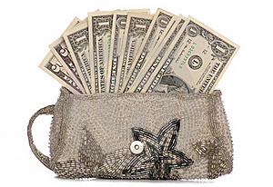 Silver Purse With American Dollars Royalty Free Stock Photos - Image: 16819258