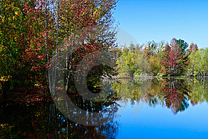 Fall Colors Royalty Free Stock Photography - Image: 16828727