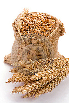 Wheat Royalty Free Stock Image - Image: 16831926