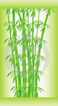 Stalks And Bamboo Leaves Stock Photography - Image: 16849932