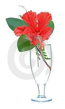 Flower Decoration Royalty Free Stock Image - Image: 16858346