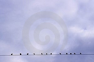 Birds Sitting On A Wire Stock Images - Image: 16860124