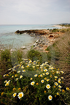 Menorcan Shoreline Stock Photo - Image: 16860800