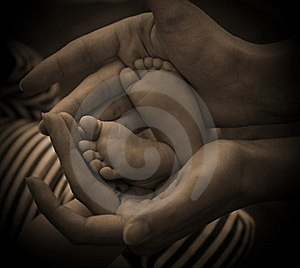 Hands And Little Feet Royalty Free Stock Image - Image: 16875566