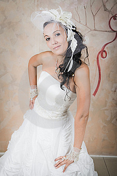 Mysterious Bride Is In White Stock Photos - Image: 16884663