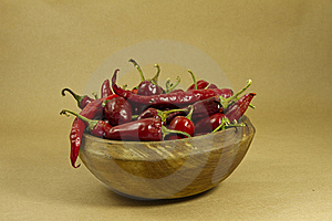 Peppers Stock Photo - Image: 16905850