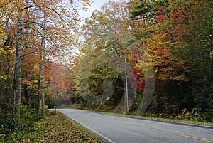 Fall Road Stock Images - Image: 16907084