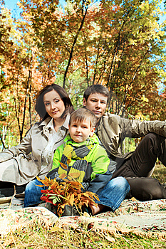 Leafage Stock Photography - Image: 16916822