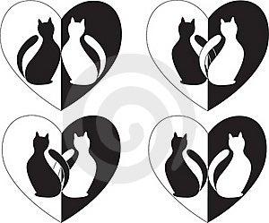 猫 库存图片 - 图片: 16923581