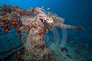 Weapons Of The Thistlegorm Wreck. Royalty Free Stock Images - Image: 16960469