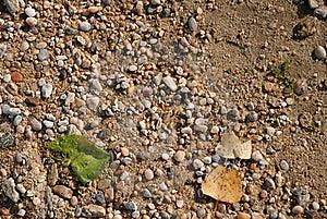 текстура песка Стоковые Изображения - изображение: 16969224