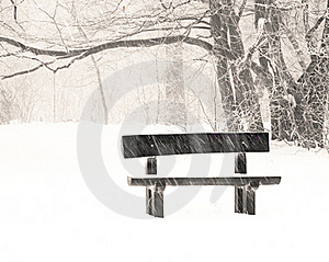 Nice Park In Winter Stock Image - Image: 16988971