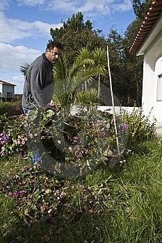 Gardening Royalty Free Stock Image - Image: 16989736