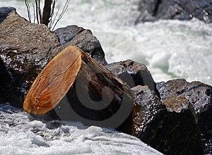 Log stuck Stock Image