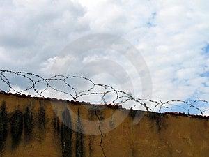Barbwire Free Stock Photo