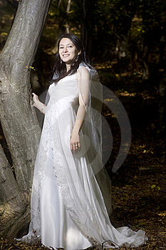 Trash the dress in autumn forest Royalty Free Stock Photos