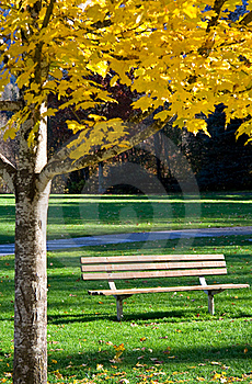 Solitude In The Park Royalty Free Stock Image - Image: 17009236