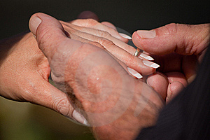 Groom Putting Ring On The Brides Finger Stock Images - Image: 17025374