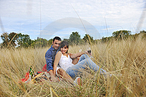 Happy Couple Enjoying Countryside Picnic Stock Photography - Image: 17029792