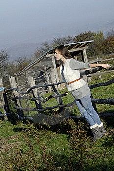 Girl Enjoying Fresh Air Stock Photography - Image: 17035182