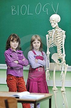 Learn Biology In School Stock Photo - Image: 17065430