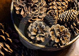 Bowl Of Pine Cones Stock Images - Image: 17070214