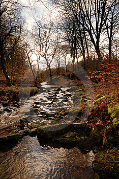 An Autumn Stream Stock Photos - Image: 17077993