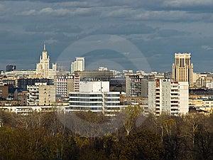Bird Fly City View Stock Image - Image: 17082731
