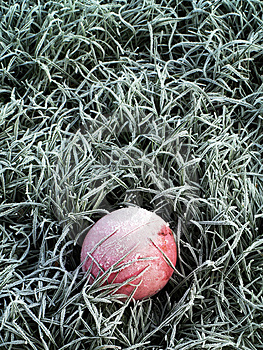 Frozen Ball2 Royalty Free Stock Photos - Image: 1716198