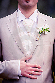 Wedding Ring On Grooms Hand Royalty Free Stock Photo - Image: 17100415