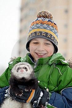 The Boy Holds A Polecat Stock Image - Image: 17124321