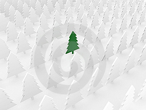 Green Tree Among White Pines Stock Photography - Image: 17130322