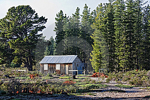 Cabin Royalty Free Stock Image - Image: 17135526