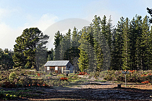 Cabin Stock Photography - Image: 17135562