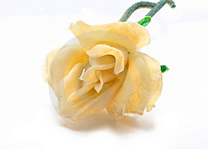 Artificial White Rose Stock Photo - Image: 17141600