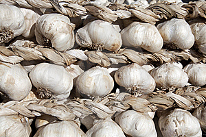 Garlic Braid Stock Images - Image: 17147124