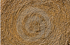 Close Up View Of A Round Hay Bale Stock Photos - Image: 17148663
