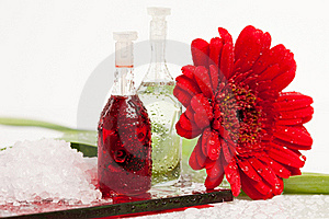 Spa Essentials Stock Image - Image: 17160511