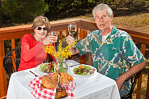 Couple Toasting The Viewer Royalty Free Stock Photos - Image: 17163748