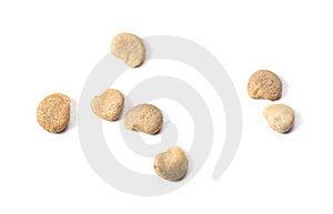 Mandrake Seeds Royalty Free Stock Image - Image: 17164076