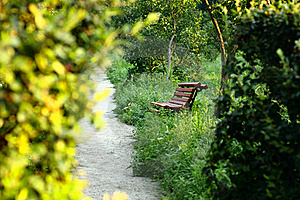 Bench By The Summer Park Royalty Free Stock Image - Image: 17173786
