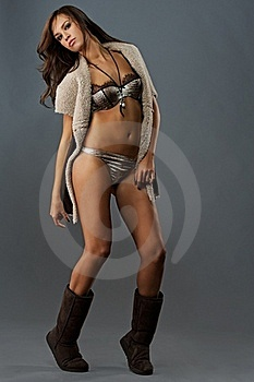 Attractive Brunette Royalty Free Stock Image - Image: 17209456